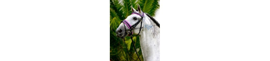 Simple Bridles
